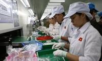 L'économie vietnamienne devrait se redresser au quatrième trimestre