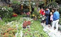 Le marché Hàng