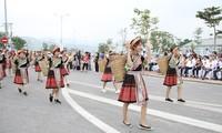聖母信仰とベトナムの村の古い祭りを顕彰するイベント