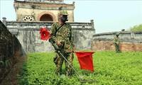 ベトナム、国際社会とともに地雷の被害を克服