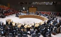 フック国家主席、安保理公開討論を主宰