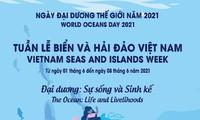 「世界海洋デー」と「ベトナム島しょ・海洋週間」の活動