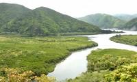 奄美大島など 世界自然遺産に登録を決定