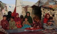 ドゥジャリク国連事務総長報道官、紛争で立ち往生するアフガン人数万人への懸念を表明