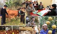 飢餓・貧困解消事業における人権の確保