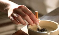 WHO memperingatkan rokok bisa menelan jiwa 1 miliar orang.