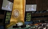联合国大会通过叙利亚问题决议草案