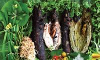 奠边省黑泰族的饮食文化