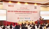 2011年越南企业年度报告发布