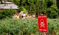 清除越南战后遗留爆炸物艺术晚会在河内举行