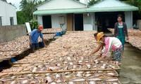 亚太渔业委员会成员要加强联系、合作与统一行动