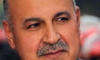 埃及副总统宣布辞职,新宪法草案全民公投结束