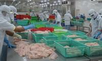 越南企业反对美国商务部对越南冷冻查鱼片征收反倾销税