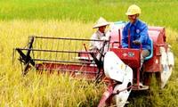 越南积极推动农业投资结构重组