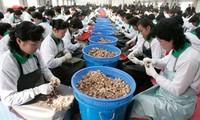 韩国建议与朝鲜就解决开城工业园区问题进行对话