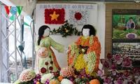 """在日本举办的2013""""越南节""""活动情谊融融"""