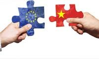 越欧自贸协定谈判座谈会举行