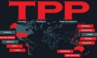 《跨太平洋战略经济伙伴关系协定》——越南经济的机遇与挑战