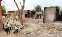 尼日利亚一集市遇袭   25人死亡