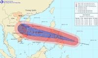 """越南政府总理要求主动应对强台风""""海燕"""""""