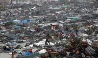 """超强台风""""海燕""""给菲律宾造成巨大破坏"""