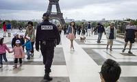 法国追捕秘密枪手