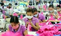 今年越南纺织品服装力争出口创汇230亿美元