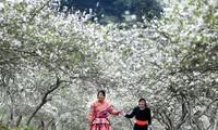 祖国最西端的边防战士喜迎新春