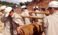美国和平树组织积极协助越南开展排雷工作