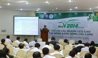 九龙江平原地区稻米产业结构重组研讨会举行