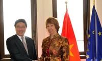 促进越南与欧盟双边合作关系