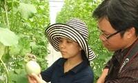 胡志明市积极推动农业科技应用