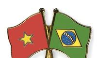 张晋创主席会见前来辞行拜会的巴西驻越大使克利弗