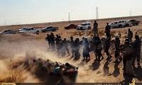 """美国排除与叙利亚合作应对""""伊斯兰国""""组织的可能"""