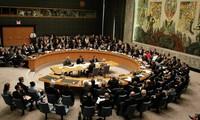 联合国安理会谴责记者索特洛夫遭斩首行为
