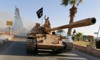"""阿拉伯各国与美国外长就""""伊斯兰国""""问题举行会谈"""