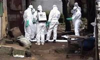 美国被确诊的首例埃博拉患者死亡
