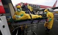 欧盟强调加大抗击埃博拉疫情努力的必要性
