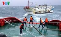 越南海上警察营救中国渔船