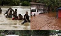 越南向莫桑比克洪灾灾民提供援助