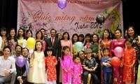 越南全国各地举行多项迎春活动
