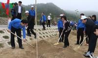 胡志明共青团中央在武元甲大将墓区举行植树节启动仪式
