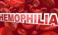 越南举行4·17世界血友病日纪念活动