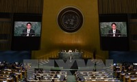 越南承诺认真落实《不扩散核武器条约》