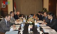 越南和埃及举行政治磋商