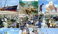 越南国家建设70年成就展即将举行