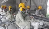 世界银行高度评价越南经济前景