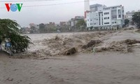 越南北部各省大雨和洪灾造成重大人员和财产损失