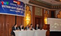 越埃企业论坛在埃及举行
