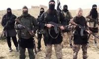 埃及对IS实施大规模军事活动
